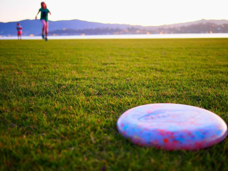 Disc Golf Report July 12, 2021 – Disc Golf Coursed Approved by Board, Construction in September